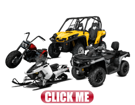 quad motorcycle snow mobile and buggy